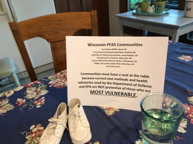 Citizens for Safe Water Around Badger Merrimac WI - Laura Olah